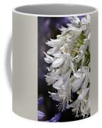 Flower-agapanthus-white-flora Coffee Mug