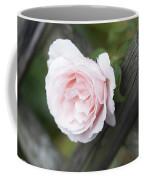 Flower Among The Fence Coffee Mug