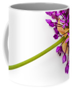 Flower At Rest Coffee Mug
