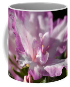Flower--azalea-white-pink Coffee Mug