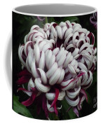 Flower Basket With Purple Texture Coffee Mug