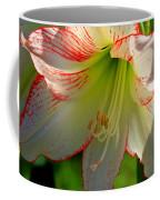 Flower Child Amaryllis Flower Art Coffee Mug