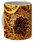 Flower - Daisy - In Other Worlds Coffee Mug