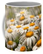 Flower - Daisy - Not Quite Fresh As A Daisy Coffee Mug