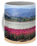 Flower Fields Of Lompoc Valley Coffee Mug
