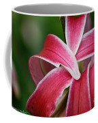 Flower Fist Coffee Mug
