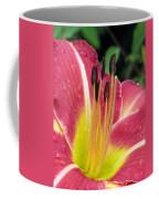 Flower Garden 02 Coffee Mug