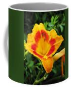 Flower Garden 05 Coffee Mug