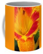 Flower Garden 06 Coffee Mug