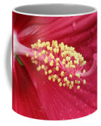 Flower Garden 15 Coffee Mug