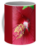 Flower Garden 16 Coffee Mug