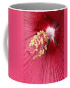 Flower Garden 17 Coffee Mug