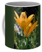 Flower Garden 22 Coffee Mug