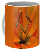 Flower Garden 24 Coffee Mug