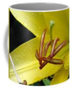 Flower Garden 28 Coffee Mug