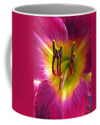 Flower Garden 30 Coffee Mug