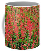 Flower Garden 34 Coffee Mug