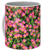 Flower Garden 36 Coffee Mug