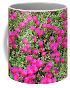 Flower Garden 38 Coffee Mug