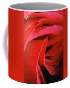Flower Garden 41 Coffee Mug
