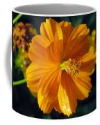 Flower Garden 43 Coffee Mug