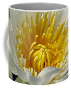 Flower Garden 68 Coffee Mug