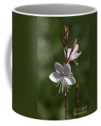 Flower-gaura-white  Coffee Mug