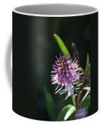 Flower-hebe  Coffee Mug