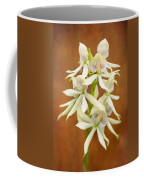 Flower - Orchid - A Gift For You  Coffee Mug