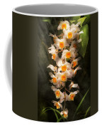 Flower - Orchid - Dendrobium Orchid Coffee Mug