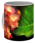Flower - Orchid - Phalaenopsis Orchids At Rest Coffee Mug