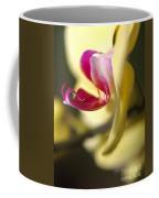 Flower-orchid-yellow Coffee Mug