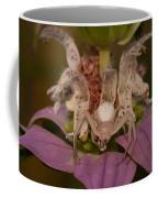 Flower Spider On Horsemint #2 Coffee Mug