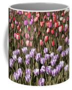 Flower Splash Vi Coffee Mug