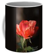 Flower-tri Toned-rose Coffee Mug