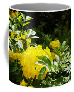 Flower - Austin Botanical Gardens -  Luther Fine Art Coffee Mug