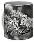 Flowering Crabapple 2 Bw Coffee Mug