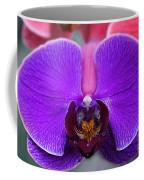 Flowers 13 Coffee Mug