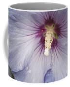 Flowers And Rain Coffee Mug