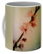 Flowers - Cherry Blossoms - Blooms Coffee Mug
