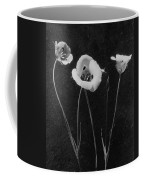 Flowers In Louise Beebe Wilder's Garden Coffee Mug