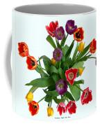 Flowers  Just  For  You Coffee Mug