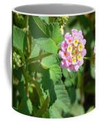 Flowers Of Pink And Orange Coffee Mug