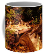 Flowing Betwixed Old Wood Near Mt St Helens Coffee Mug