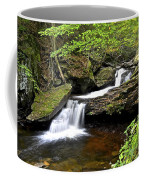 Flowing Falls Coffee Mug