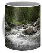 Flowing Stream In Vermont Coffee Mug