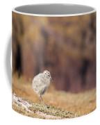 Fluffball Walking Coffee Mug by Anne Gilbert