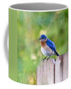 Fluffed Up Coffee Mug