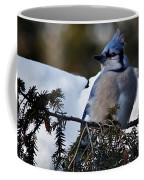 Fluffy Blue Jay Coffee Mug