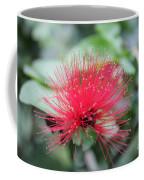 Fluffy Pink Flower Coffee Mug